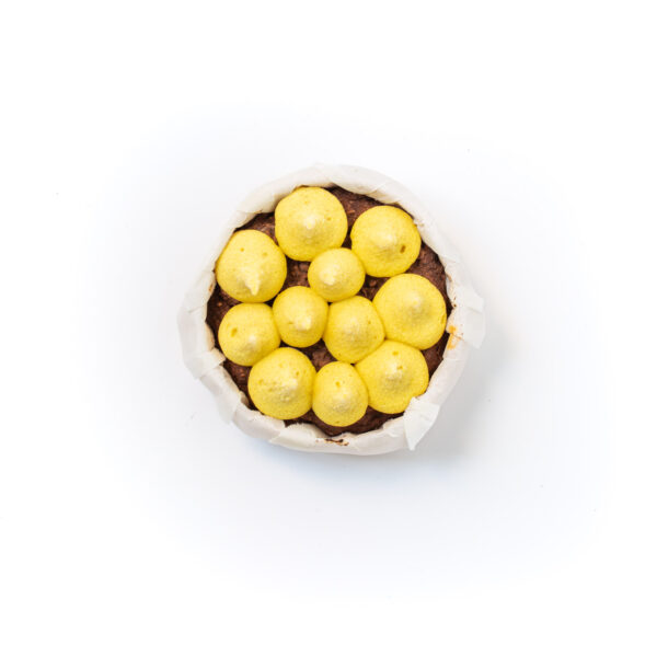 Chokbites Double chocolate mango top